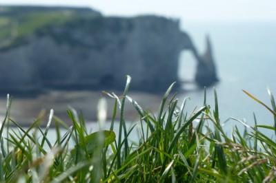 Caché derrière les brins d'herbes : Étretat