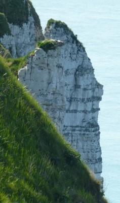 Strates de silex dans les falaises de la Côte d'Albâtre