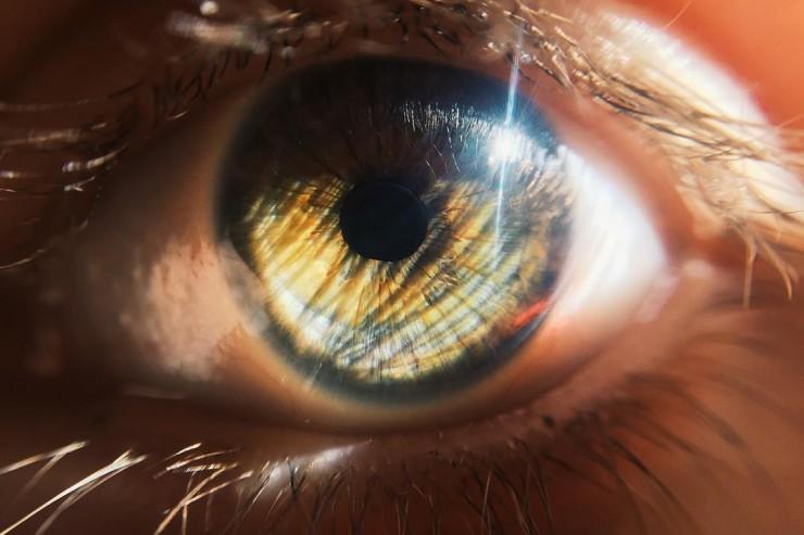Lumière dans l'œil
