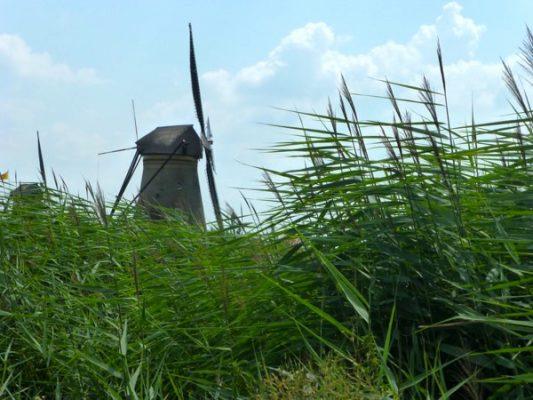 Un moulin à vent à Kinderdijk