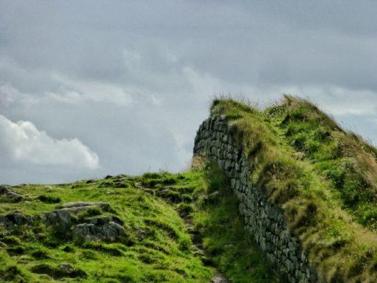 De l'herbe a poussé sur le mur d'Hadrien
