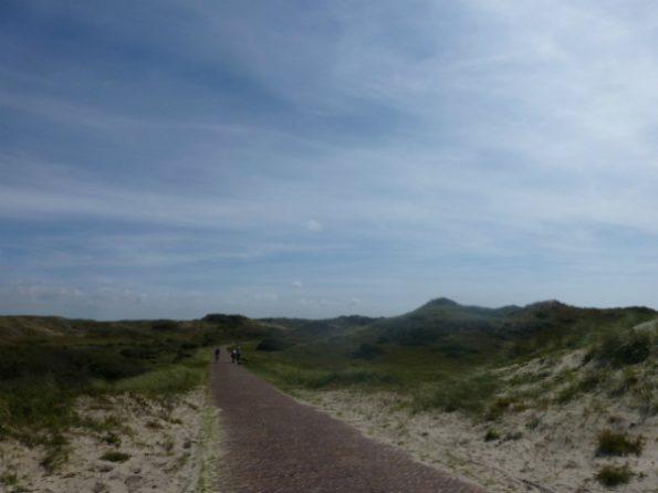 Les dunes le long du chemin