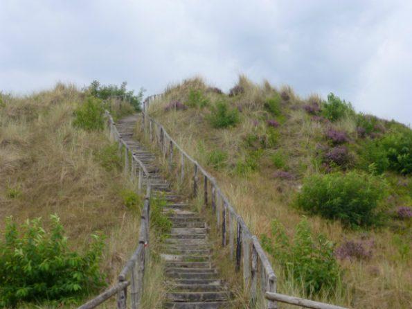 Escalier pour accéder au point de vue sur la dune