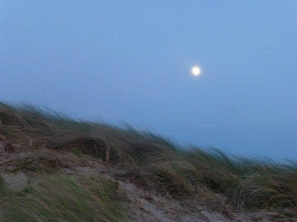 La lune brille au-dessus des dunes