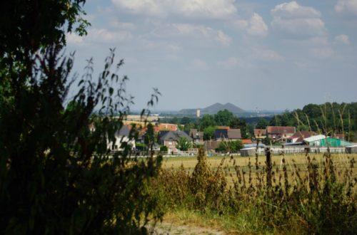 Article : Le bassin minier du Nord-Pas-de-Calais : terrils et corons