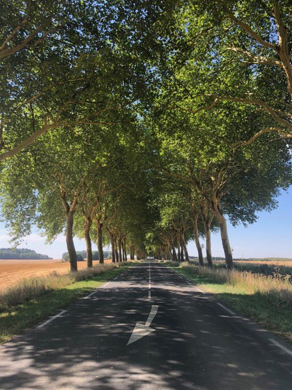 Une des évocation de la Nationale 7 : les routes bordées d'arbres