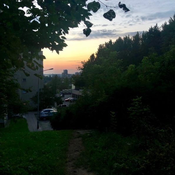 Derrière chez, moi : la forêt !