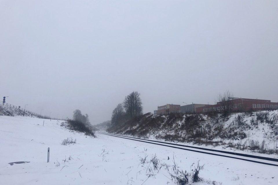 Tout blanc de neige ©Clara Delcroix