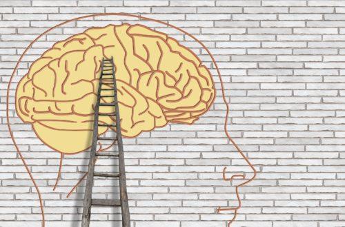 Article : Bipolaire face au juge des tutelles